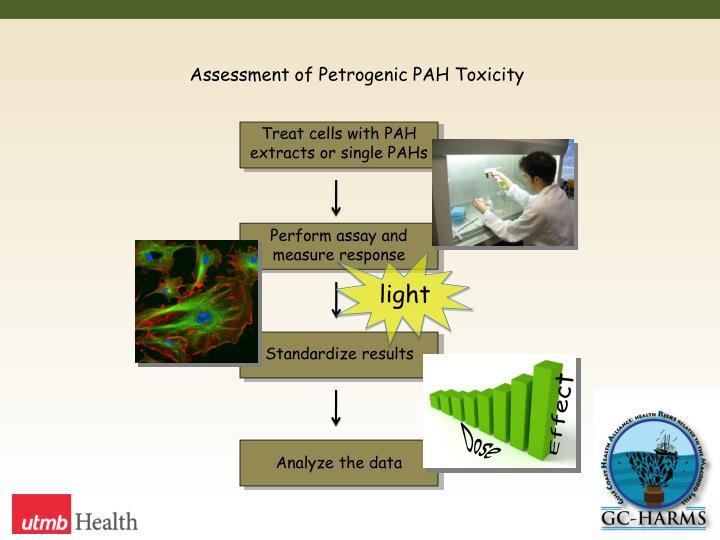Assessment of Petrogenic PAH Toxicity