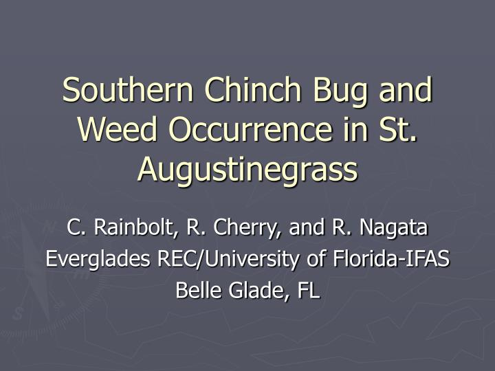 southern chinch bug and weed occurrence in st augustinegrass n.