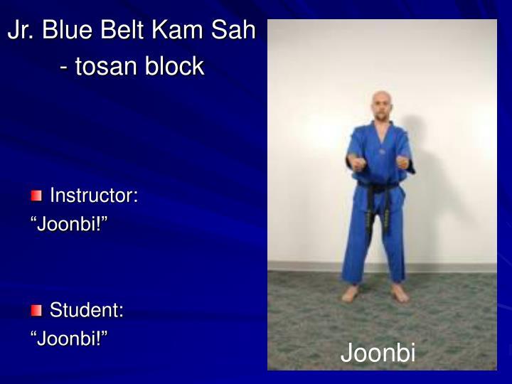 Jr blue belt kam sah tosan block1