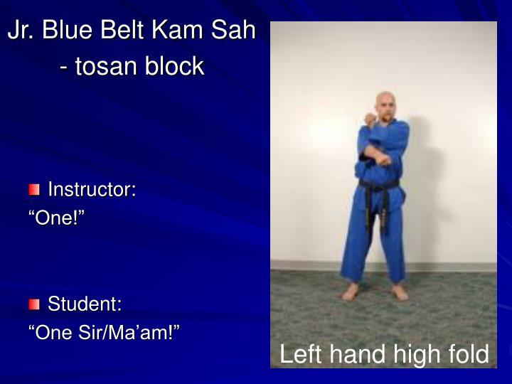 Jr blue belt kam sah tosan block2