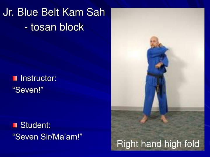 Jr. Blue Belt Kam Sah - tosan block