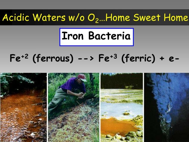 Acidic Waters w/o O