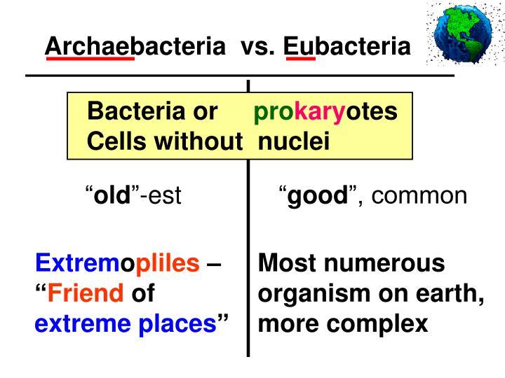Archaebacteria  vs. Eubacteria