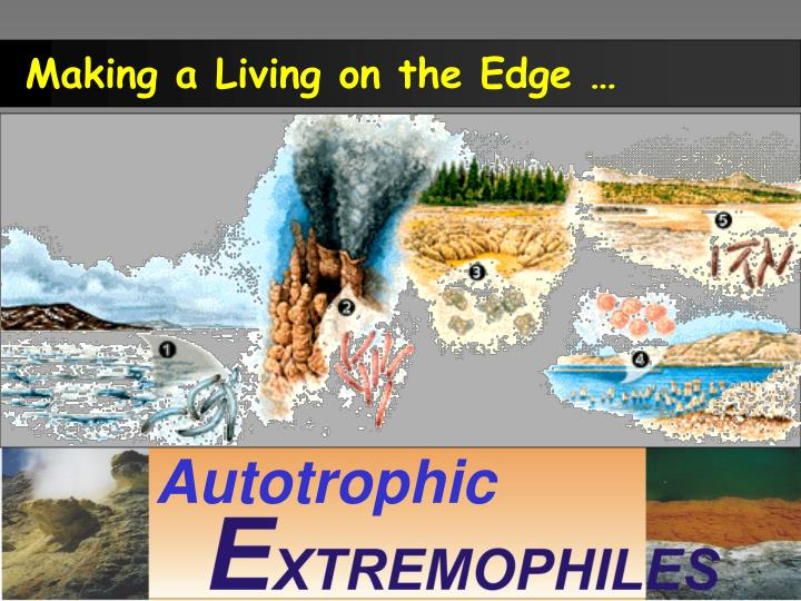 Making a Living on the Edge …
