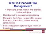 what is financial risk management