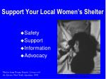 support your local women s shelter