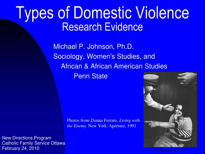types of domestic violence research evidence n.