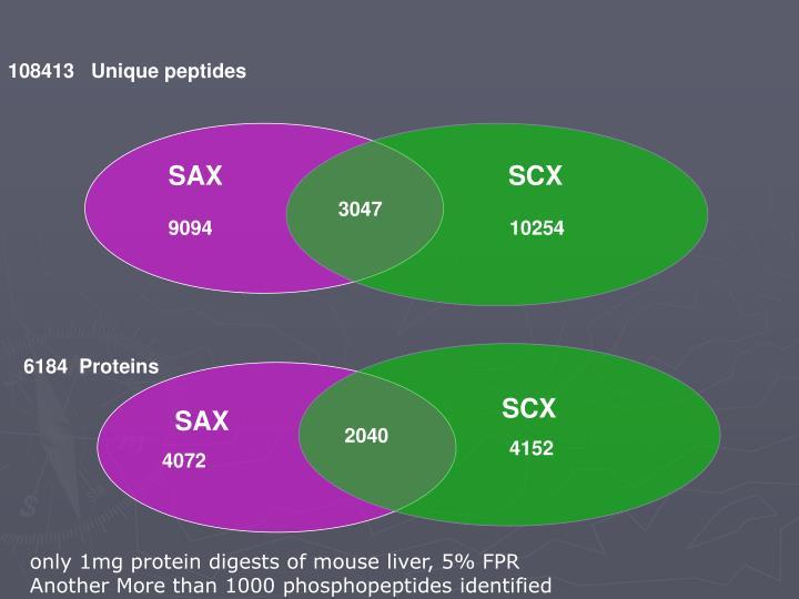 108413   Unique peptides