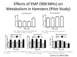 effects of emf 900 mhz on metabolism in hamsters pilot study