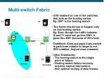 multi switch fabric