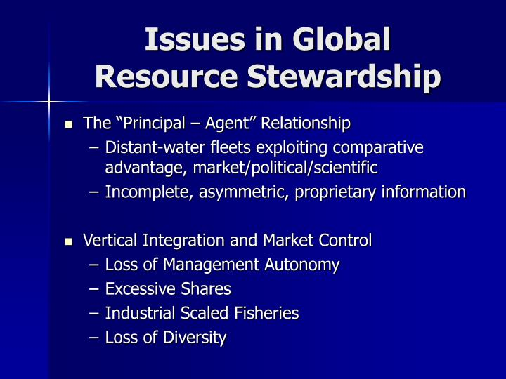 Issues in global resource stewardship