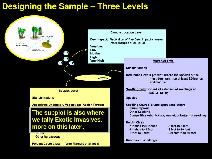 Designing the Sample – Three Levels