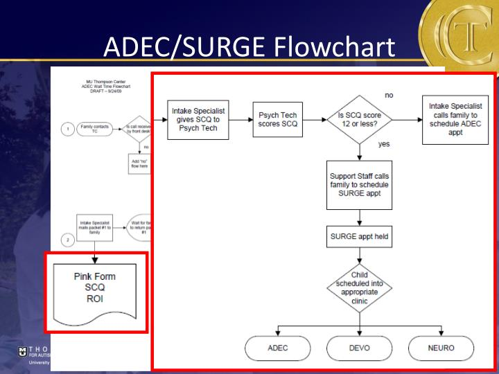 ADEC/SURGE Flowchart