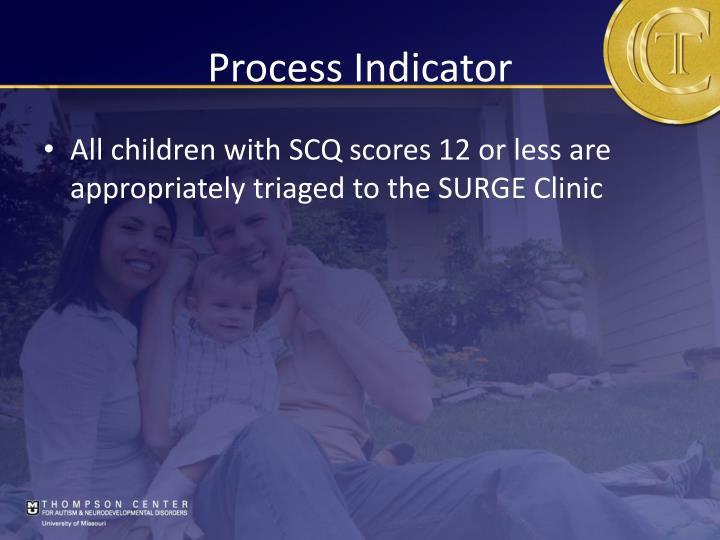 Process Indicator
