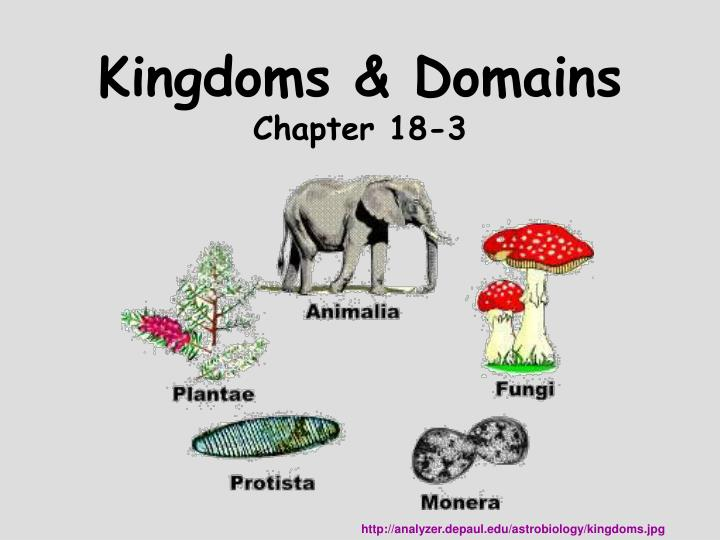 Kingdoms domains chapter 18 3