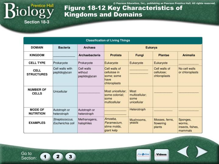Figure 18-12 Key Characteristics of Kingdoms and Domains