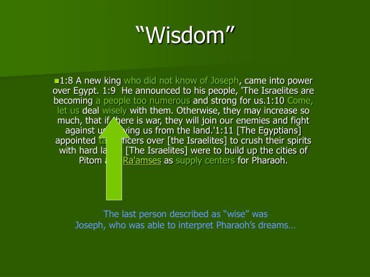 """""""Wisdom"""""""