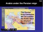 arabia under the persian reign