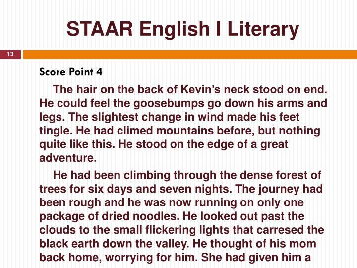 STAAR English I Literary