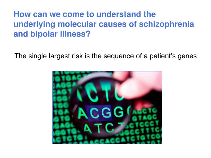 How can we come to understand the underlying molecular causes of schizophrenia and bipolar illness?