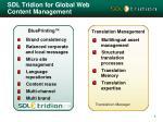 sdl tridion for global web content management