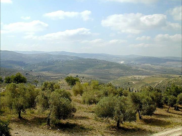 Tell Samaria from north