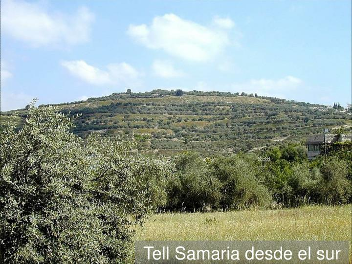 Tell Samaria from south