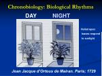 chronobiology biological rhythms