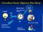 circadian clock opposes day sleep