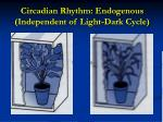 circadian rhythm endogenous independent of light dark cycle