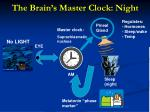 the brain s master clock night