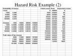 hazard risk example 2