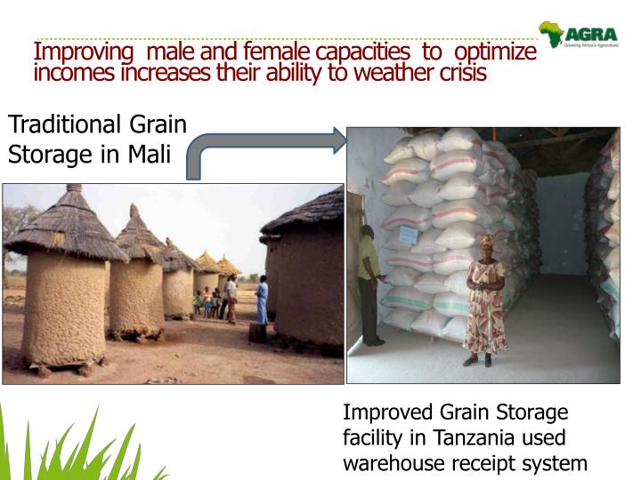 Improving  male and female capacities  to  optimize  incomes increases their ability to weather crisis