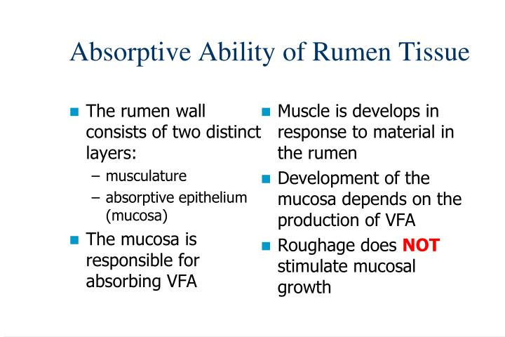 The rumen wall consists of two distinct layers:
