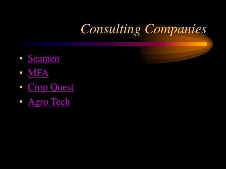 Consulting Companies