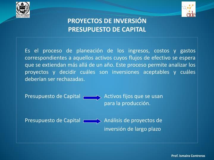 Proyectos de inversi n presupuesto de capital