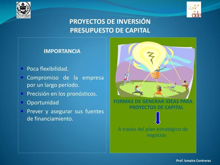 Proyectos de inversi n presupuesto de capital1