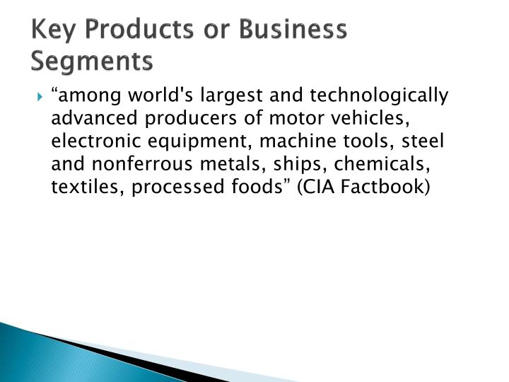 Key Products or Business Segments