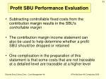 profit sbu performance evaluation