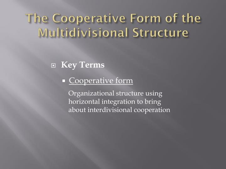 The Cooperative Form of the Multidivisional Structure