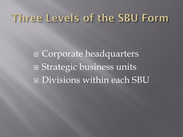 Three Levels of the SBU Form