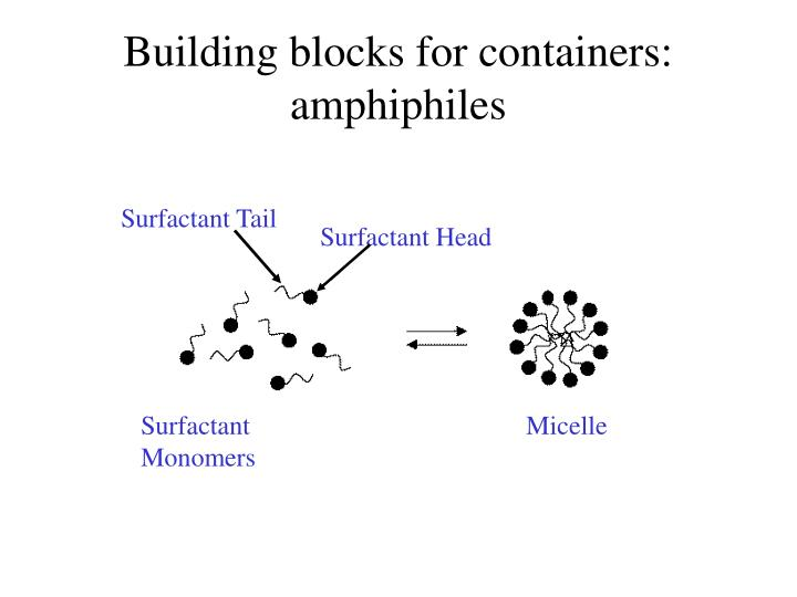 Building blocks for containers: amphiphiles