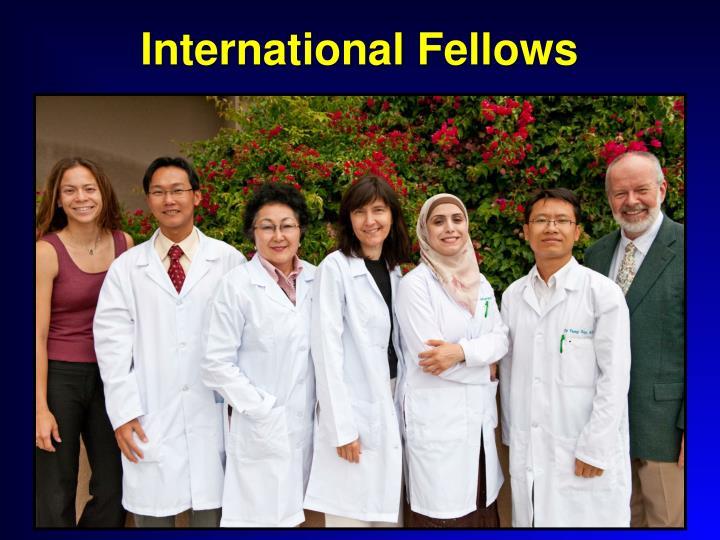 International Fellows