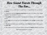 how sound travels through the ear