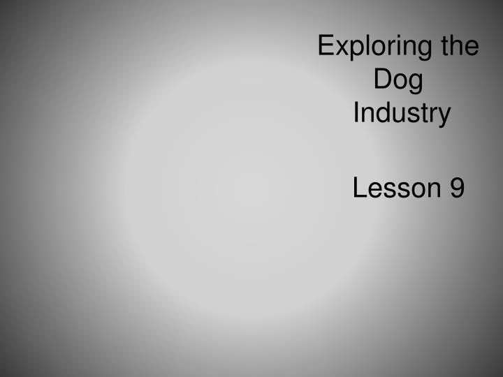 Exploring the dog industry