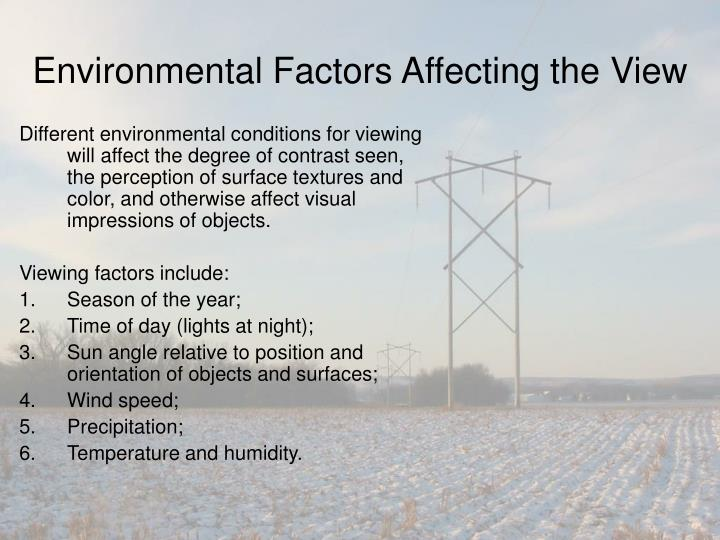 Environmental Factors Affecting the View