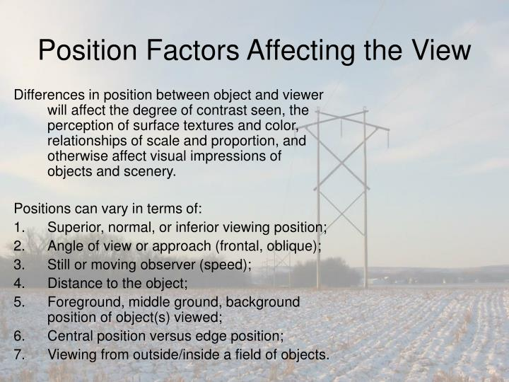 Position Factors Affecting the View
