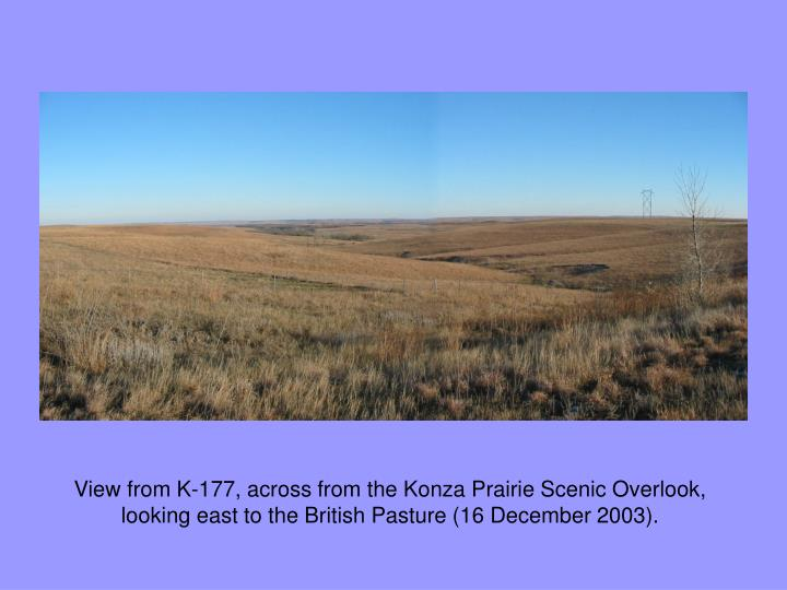 View from K-177, across from the Konza Prairie Scenic Overlook, looking east to the British Pasture (16 December 2003).