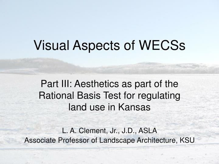 Visual Aspects of WECSs