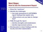 next steps how to use the assessment report